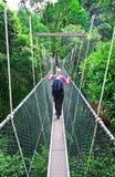 Luifelgang Borneo stock fotografie