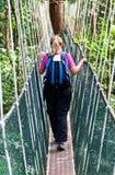 Luifelgang Borneo stock foto