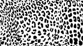 Luipaard Patroontextuur die naadloze zwart-wit zwart herhalen & wit Stock Afbeeldingen