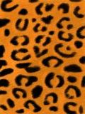 Luipaard skin1 Royalty-vrije Stock Afbeeldingen