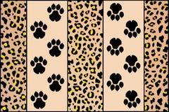 Luipaardvoetafdrukken Stock Afbeelding