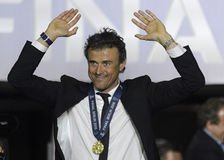 Luis Enrique Obraz Royalty Free