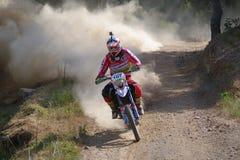 Luis Teixeira Stock Photography