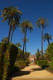 luisa maria park seville royaltyfria bilder