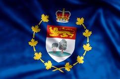 Luitenant-gouverneur van de het kleurrijke golven van Prins Edward Eilanden en illustratie van de close-upvlag royalty-vrije illustratie