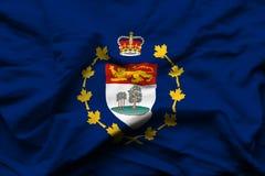Luitenant-gouverneur van realistische de vlagillustratie van Prins Edward Eilanden vector illustratie