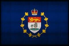 Luitenant-gouverneur van roestige de vlagillustratie van Prins Edward Eilanden royalty-vrije illustratie