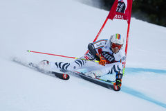 LUITZ Stefan in Audi Fis Alpine Skiing World-Schale Men's riesiges S lizenzfreies stockfoto