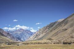 Lujan de Cuyo in Mendoza, Argentinien Lizenzfreie Stockfotografie
