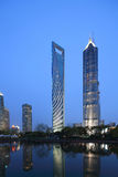 The Shanghai world financial center. The lujiazui park night scene Stock Images