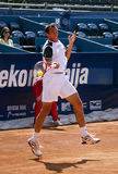 Lukas Rosol-1 Stock Photography