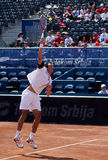 Lukas Rosol-2 Royalty Free Stock Photos