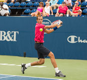 Lukas Rosol. Plays center court at the Winston-Salem Open Royalty Free Stock Photos