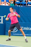 Lukas Rosol. Plays center court at the Winston-Salem Open during his 3-set win over Jerzey Jankowicz Stock Photo