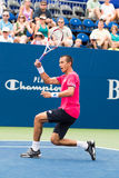Lukas Rosol. Plays center court at the Winston-Salem Open during his 3-set win over Jerzey Jankowicz Stock Photos