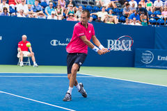 Lukas Rosol Stock Photos