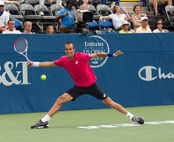 Lukas Rosol royalty free stock photography