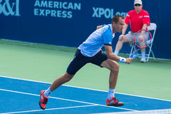 Lukas Rosol. WINSTON-SALEM, NC, USA - AUGUST 24: Lukas Rosol plays center court at the Winston-Salem Open on August 24, 2015 in Winston-Salem, NC, USA Stock Photos