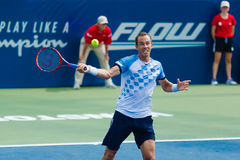 Lukas Rosol. WINSTON-SALEM, NC, USA - AUGUST 24: Lukas Rosol plays center court at the Winston-Salem Open on August 24, 2015 in Winston-Salem, NC, USA Stock Images
