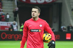 Lukasz Fabianski Royalty Free Stock Photo