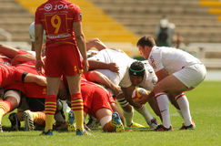 Luke Burgess of Stade Toulousain. In front of scrumming during the French rugby union league match USAP Perpignan vs Stade Toulousain at the Olympic Stadium in Stock Images