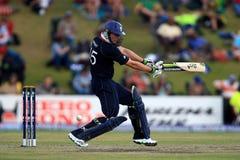Luke Wright England Batsman Fotos de archivo