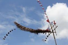 Luklom är kulturella representanter i det Trang landskapet Fotografering för Bildbyråer