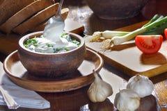 Lukmira. Onion salad with sour cream Royalty Free Stock Photos