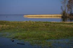 Lukoml湖在白俄罗斯 一些反弹严格晴朗那里不是的蓝色云彩日由于域重点充分的绿色横向小的移动工厂显示天空是麦子白色风 库存图片