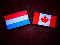 Luksemburg zaznacza z kanadyjczyk flaga na drzewnym fiszorku odizolowywającym obrazy stock