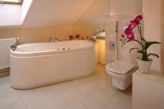 luksus do łazienki zdjęcia royalty free