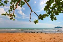 Luksus plaża Obrazy Royalty Free