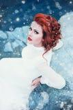 Luksusowa śnieżna królowa Obrazy Royalty Free