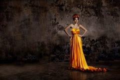 Luksusowa dama w jedwab sukni zdjęcia royalty free