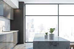 Luksusowa szara loft kuchnia z barem ilustracji