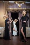 Luksusowe dziewczyny w wieczór sukniach w pięknym zdjęcie stock