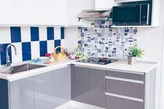 Luksusowe kuchnie z piekarnikami, elektrycznymi kuchenkami, luksusowymi instalacji wodnokanalizacyjnych element wyposażenia i kom obraz stock