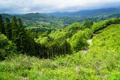 Luksusowego greenery halna panorama, most i miasteczko widok od daleko, zdjęcia stock