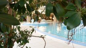 Luksusowego kurortu basen z pi?kn? czyst? b??kitne wody 4K Tropikalni drzewa w kurortu basenie zbiory