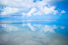 Luksusowej nieskończoności pływacki basen w tropikalnym Zdjęcia Royalty Free
