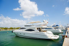 Luksusowi jachty dokujący w porcie Fotografia Royalty Free