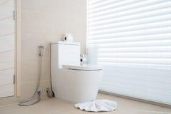 Luksusowy łazienki cechy toaletowego pucharu dom, dom, buduje obrazy royalty free