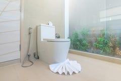 Luksusowy łazienki cechy toaletowego pucharu dom, dom, buduje zdjęcia royalty free
