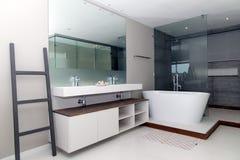 Luksusowy łazienki ustawianie ilustracji