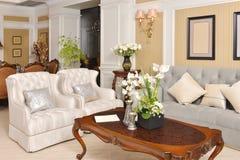 Luksusowy żywy izbowy urządzenie meble dopasowanie zdjęcia royalty free