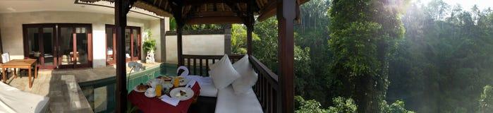 Luksusowy basenu tarasu las tropikalny obraz stock