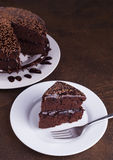 Luksusowy Bogaty Czekoladowy tort na bielu talerzu Obraz Stock