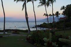 Luksusowy greenery w Hawaje Obrazy Stock