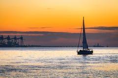 Luksusowy jachtu żeglowanie na Tagus rzece przy zmierzchem Fotografia Royalty Free