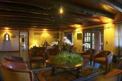 Luksusowy nowożytny żywy pokój Zdjęcia Royalty Free